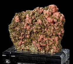 Japanese Rhodochrosite on Pyrite