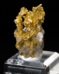 Eagle's Nest Gold on Quartz