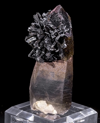 Goethite Rose on Smoky Quartz