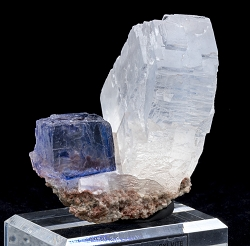 Blue & Clear Halite on Sylvite